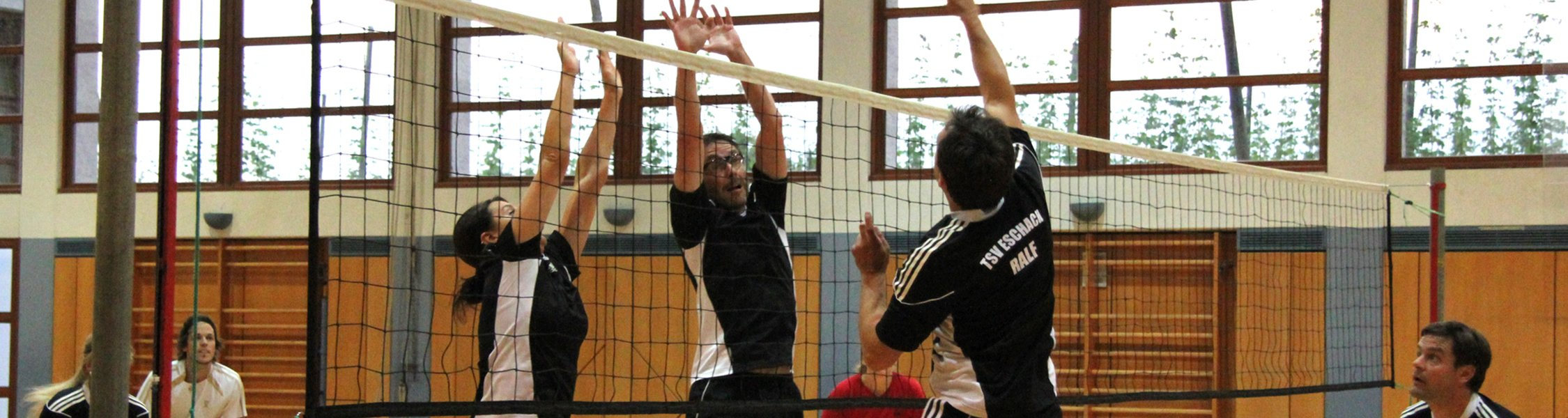 TSV-Eschach Volleyball
